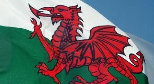 All eight Welsh Tory MPs say no to gay marriage